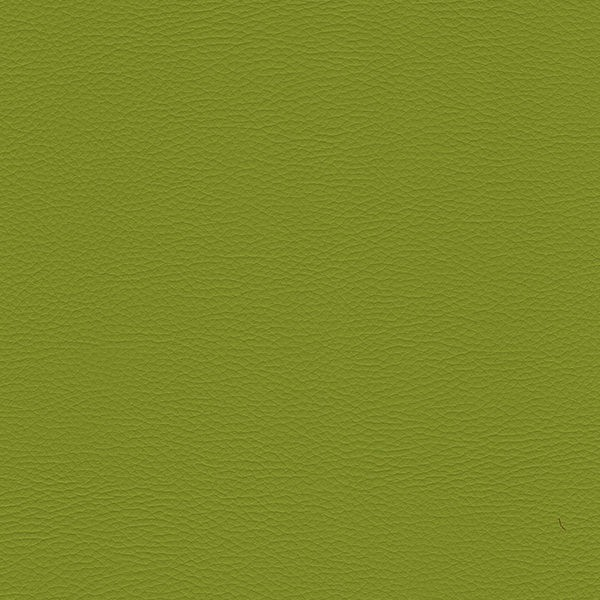 Ecopelle soft verde